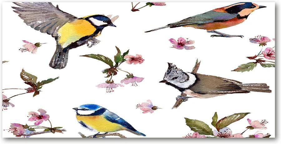 Tablou acrilic Bird flori de cires