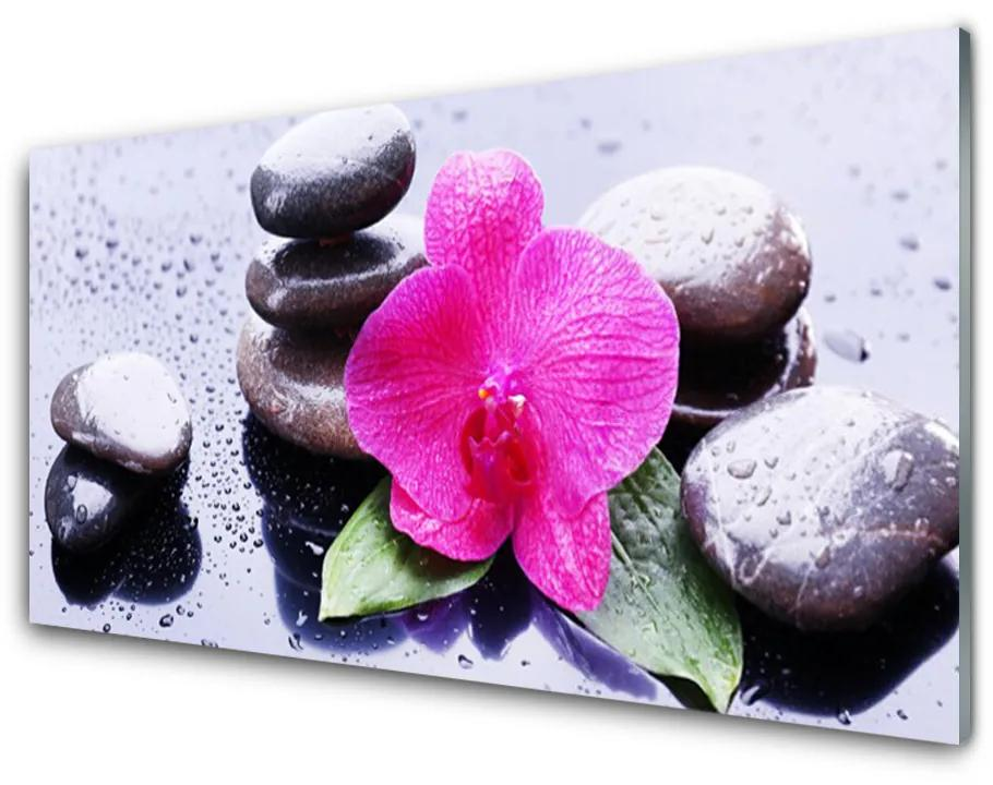 Tablou pe sticla Pietrele de flori Art Rosu Negru