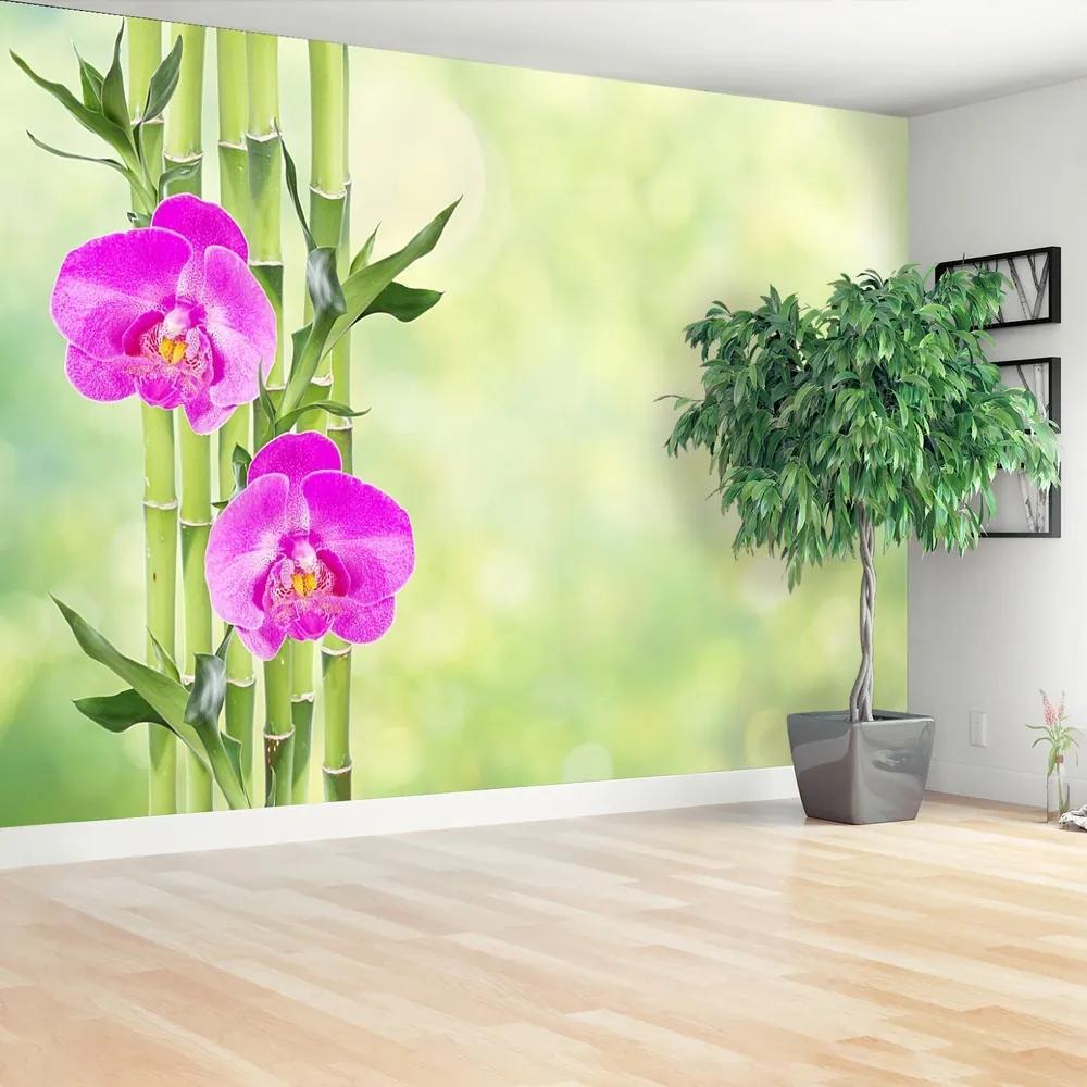Fototapet Orchid și lemn de bambus