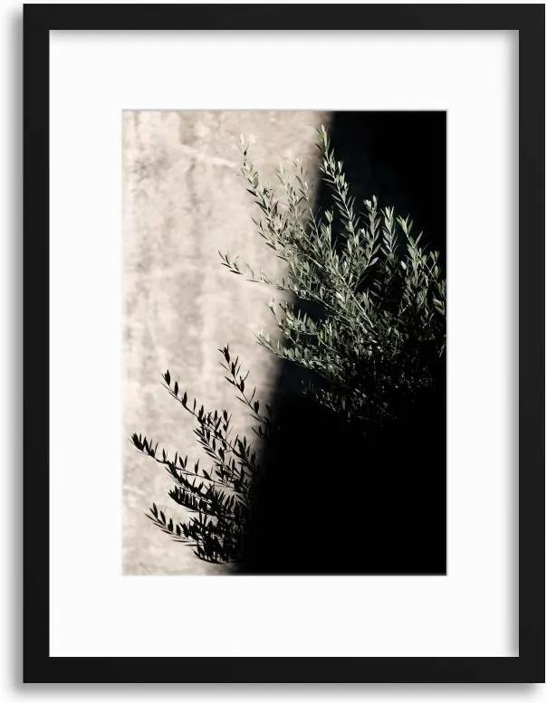 Imagine în cadru - Olive Shadows 30x40 cm