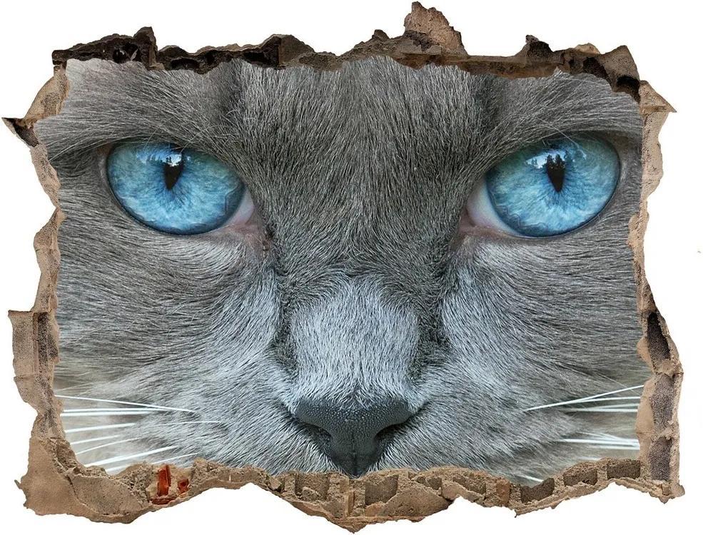 Autocolant autoadeziv gaură Cat ochi albaștri