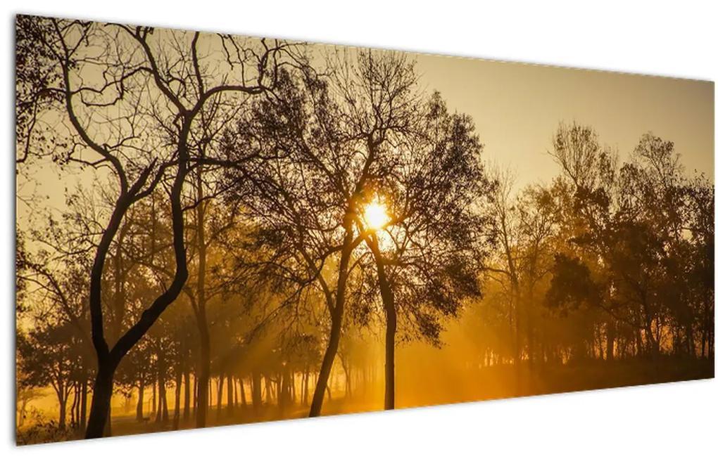 Tablou cu răsăsrit de soare (120x50 cm), în 40 de alte dimensiuni noi