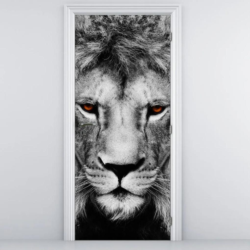 Fototapeta pentru ușă - leu (95x205cm)