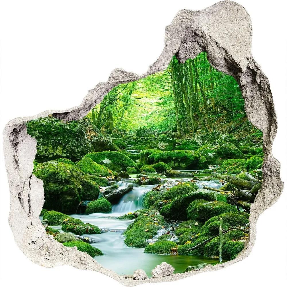 Fototapet 3D gaură în perete Stream în pădure