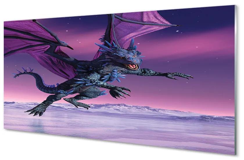 Tablouri acrilice Tablouri acrilice Dragon cer colorat