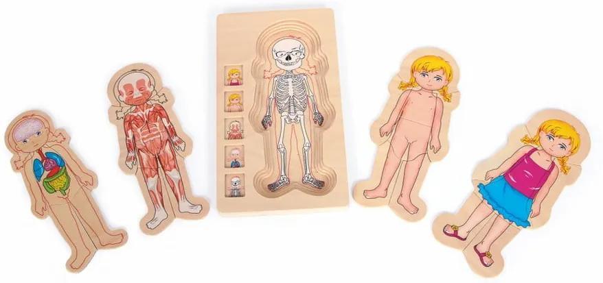 Jucărie din lemn Legler Anatomy Girl