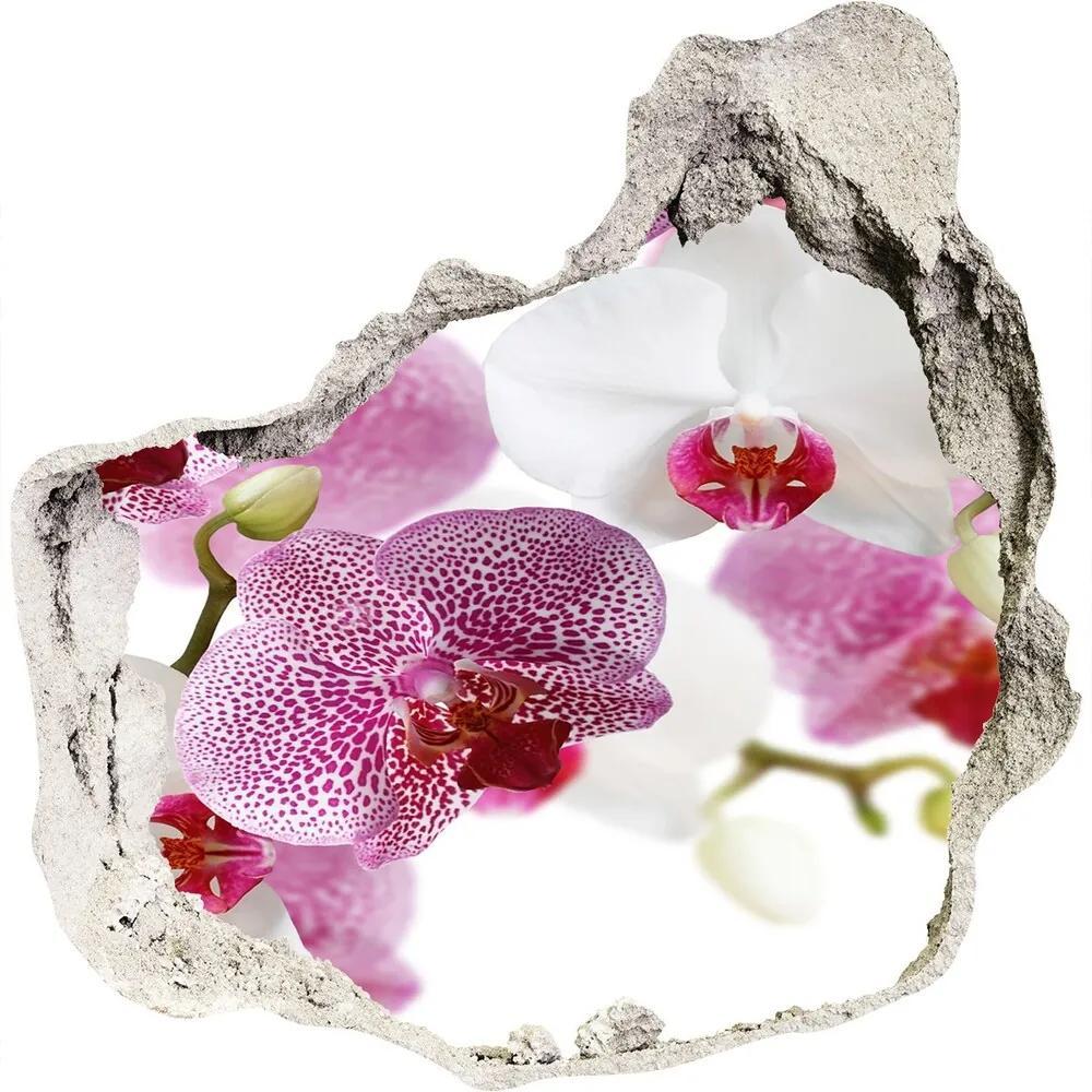 Autocolant gaură 3D Picturi murale orhidee