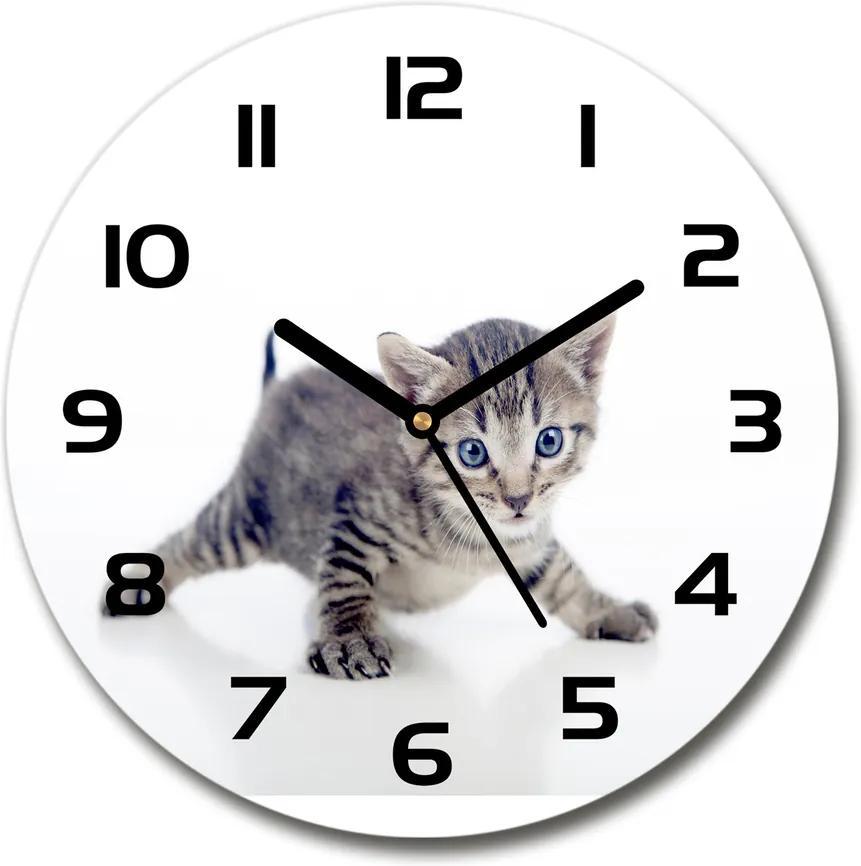 Ceas rotund de perete din sticlă Pisica mica