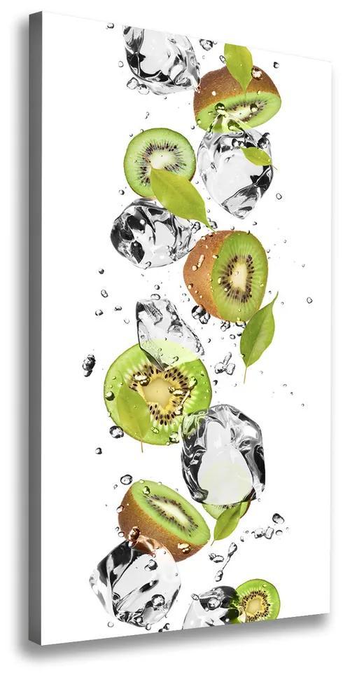Tablou pe pânză Kiwi si apa