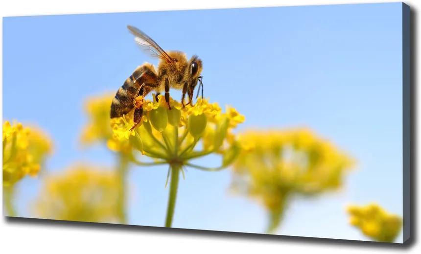 Tablou pe pânză Albine pe o floare