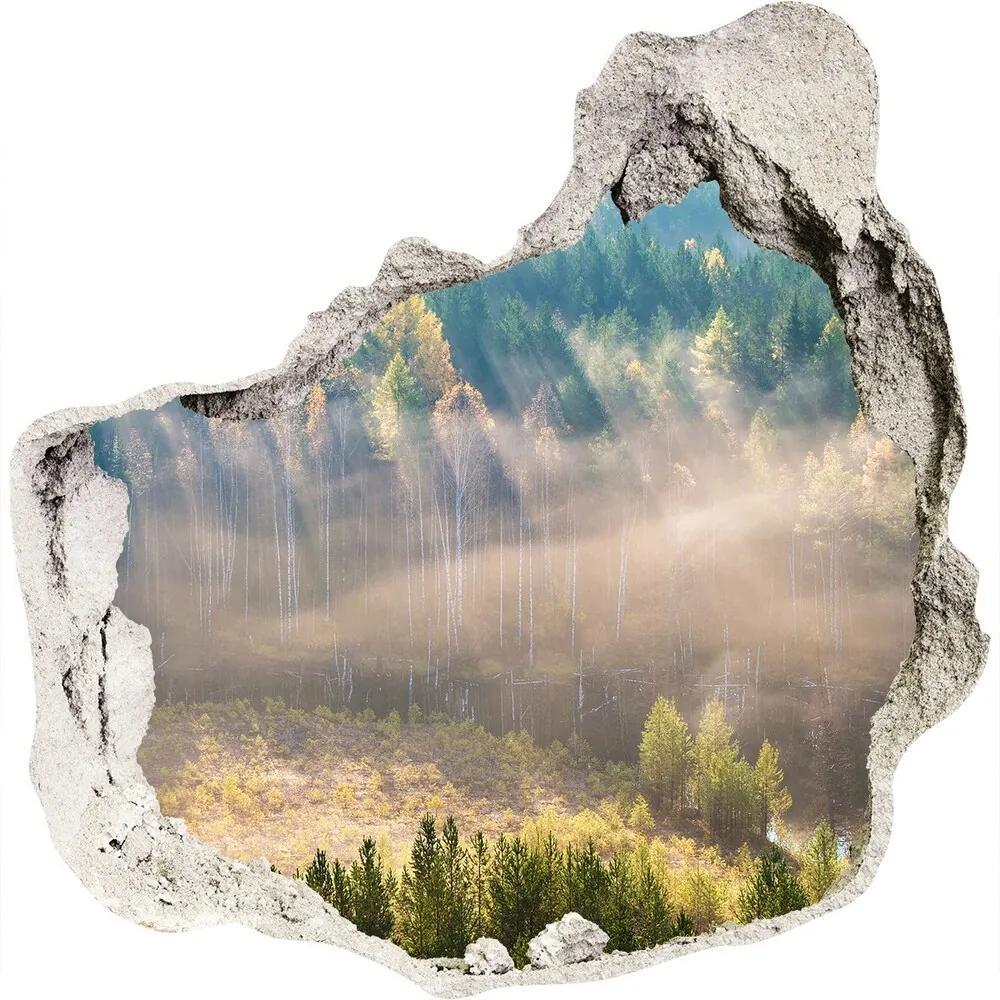 Autocolant gaură 3D Ceață în pădure