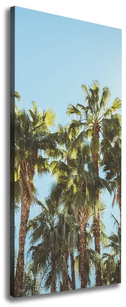 Print pe pânză Palmieri