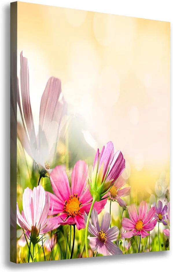 Tablou canvas Flori de câmp