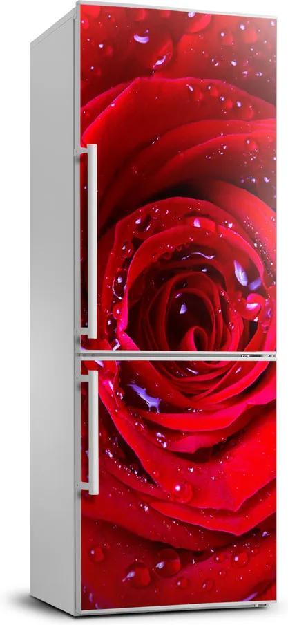 Autocolant pe frigider Trandafir roșu