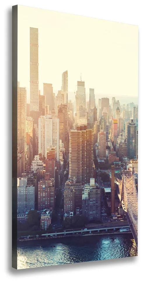 Tablou pe pânză New York pasăre de zbor
