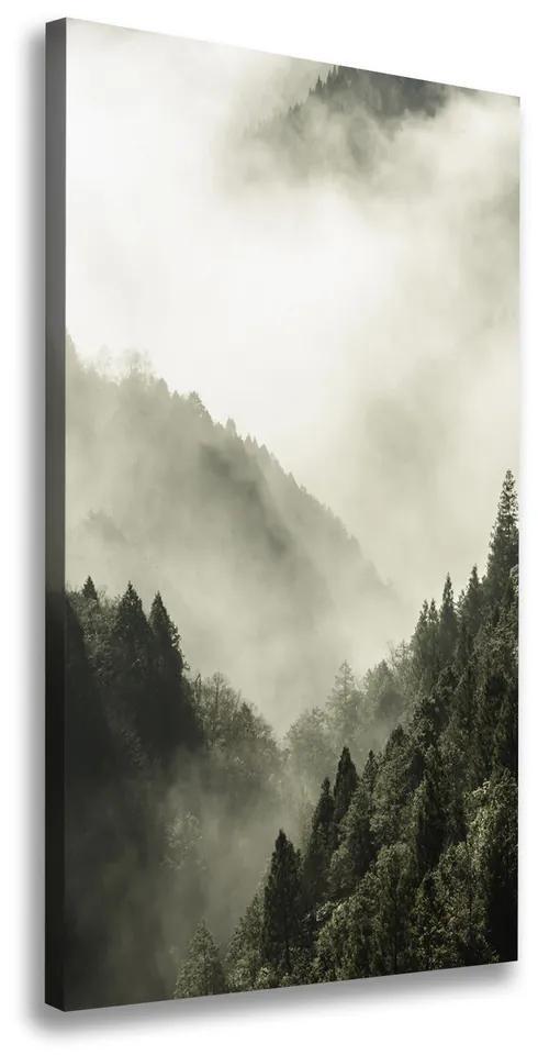Tablou pe pânză canvas Ceață peste pădure