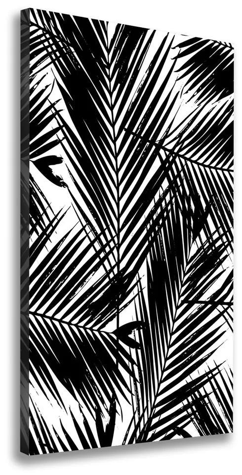 Print pe pânză Frunze de palmier