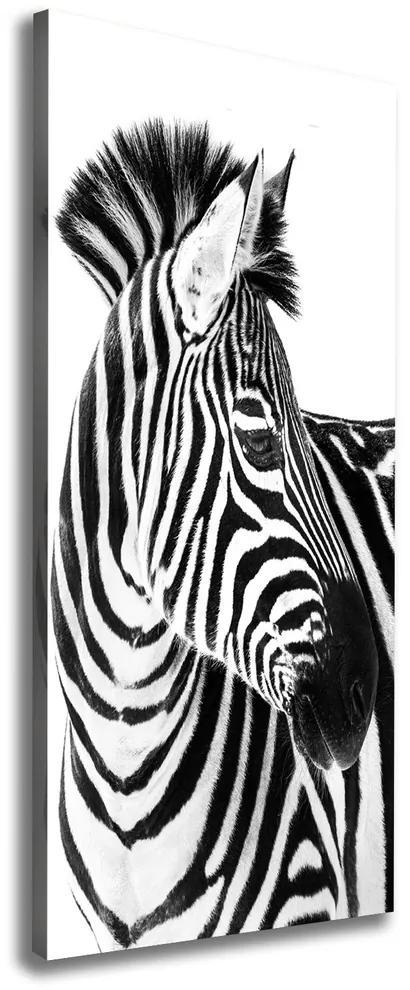 Pictură pe pânză Zebra în zăpadă