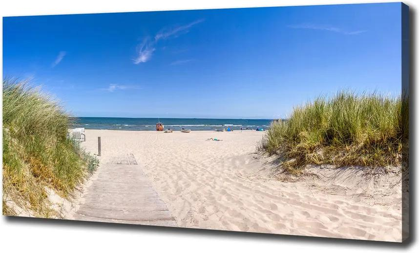 Tablouri tipărite pe pânză Dune de coastă
