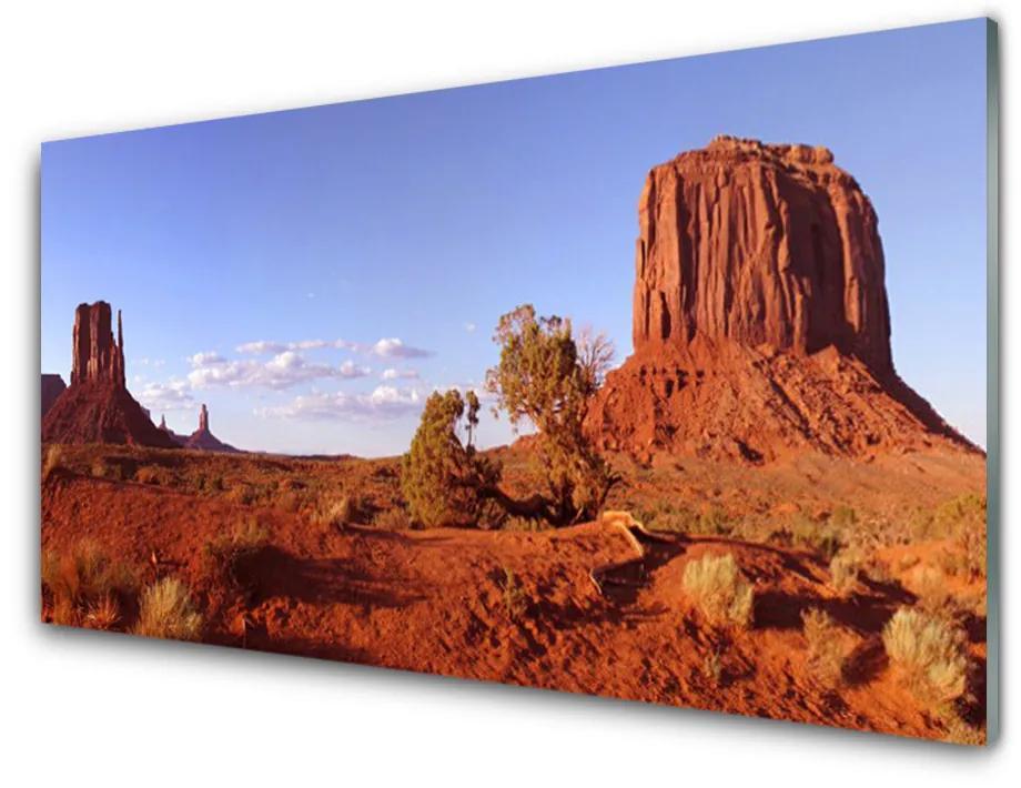 Tablou pe sticla acrilica Desert Peisaj Brun Verde