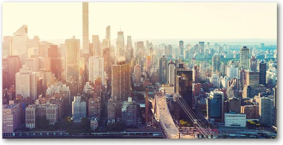 Imagine de sticlă New york pasăre de zbor