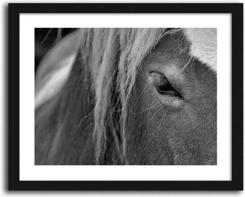 CARO Imagine în cadru - Horse 2 40x30 cm