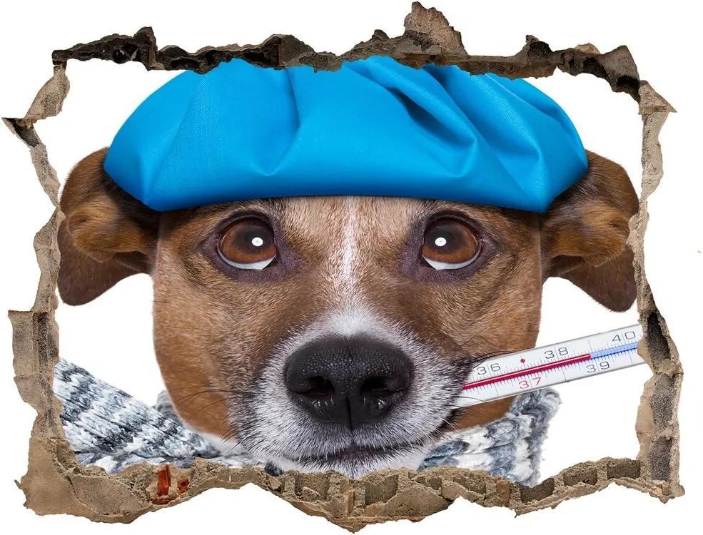 Autocolant un zid spart cu priveliște Câine bolnav