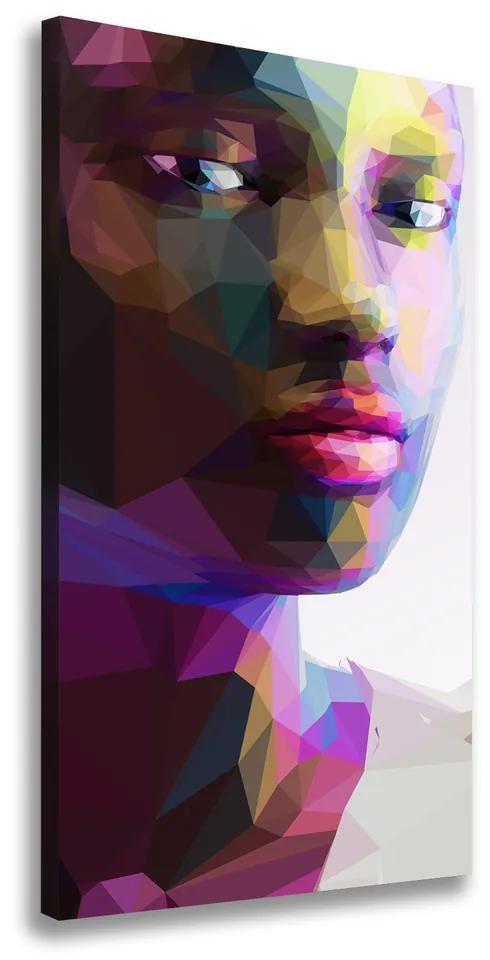 Pictură pe pânză Abstracție femeie