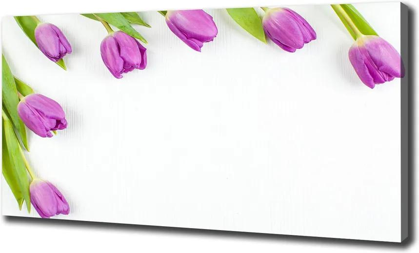 Tablou pe pânză canvas Lalele mov