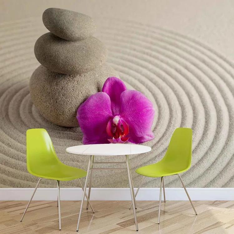 Zen Garden Flower Fototapet, (250 x 104 cm)