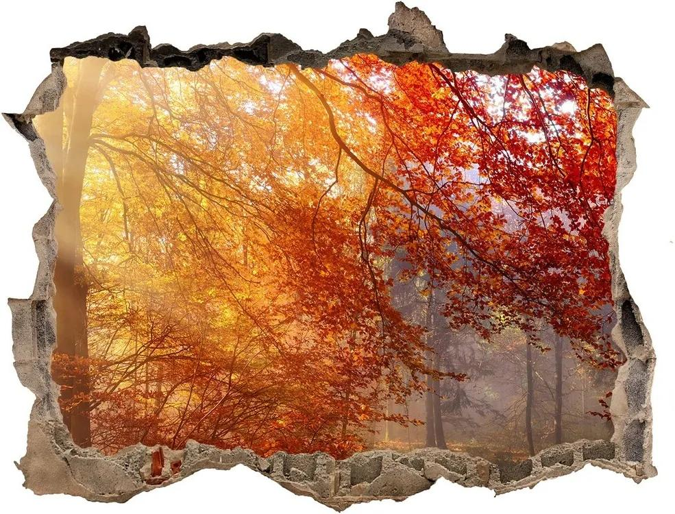 Autocolant 3D gaura cu priveliște Pădure de toamnă