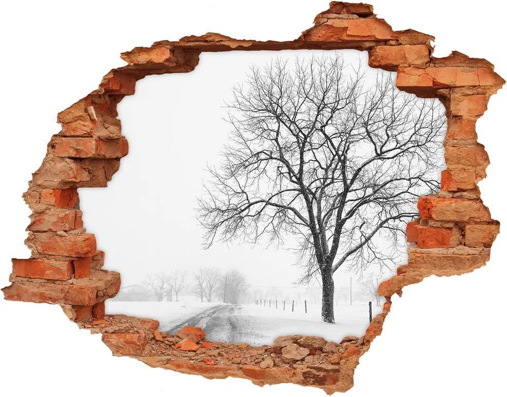 Autocolant gaură 3D Copac în timpul iernii