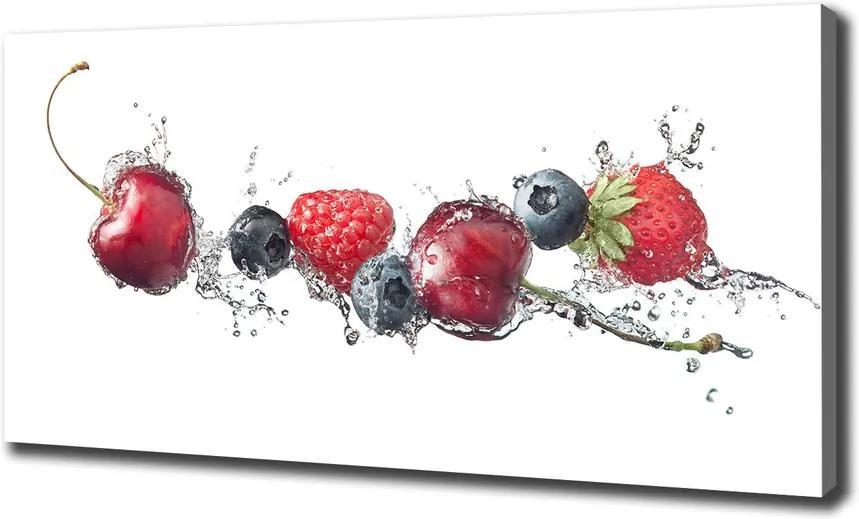 Tablou pe pânză canvas Fructe de padure