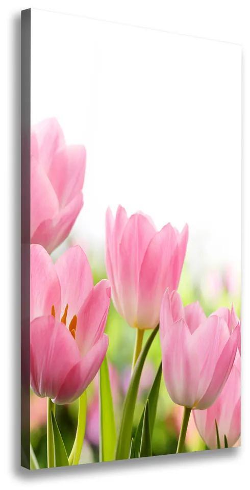 Tablou canvas Lalele roz