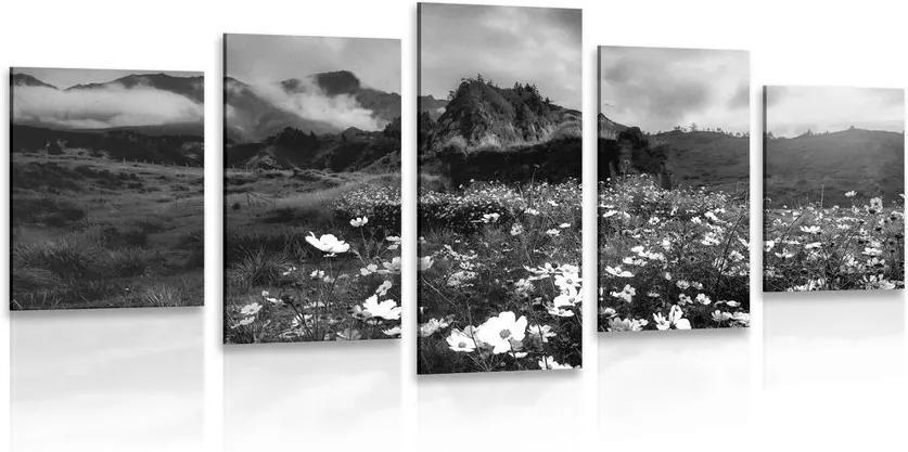 Tablou 5-piese pajiște de flori înfloritoare în design alb-negru