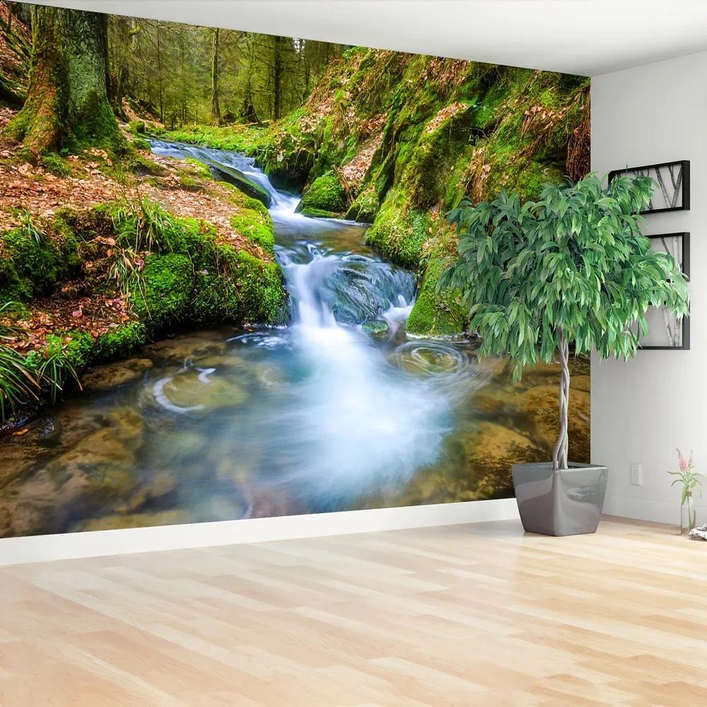 Fototapet Forest Stream