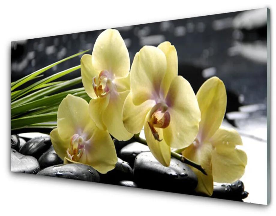 Tablou pe sticla acrilica Flori Floral Galben