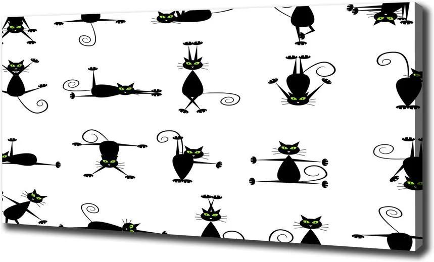 Tablou pe pânză Pisici ilustrare