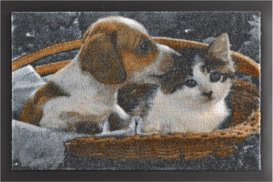 Covor Hanse Home Animals Dog and Cat, 40 x 60 cm