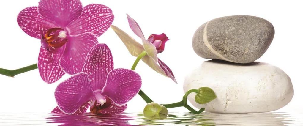 Fototapet: Orhideea cu pietre - 104x250 cm