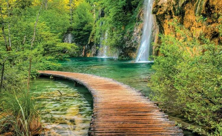 Path Sea Mountains Waterfall Forest Fototapet, (312 x 219 cm)