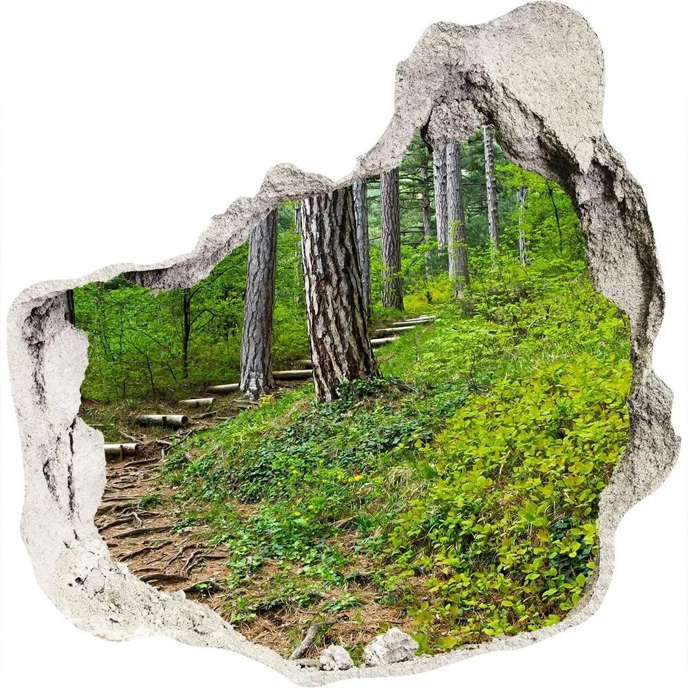 Autocolant 3D gaura cu priveliște Drum forestier