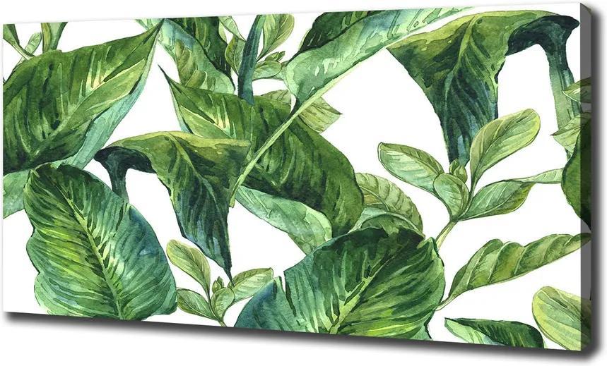 Pictură pe pânză Frunze
