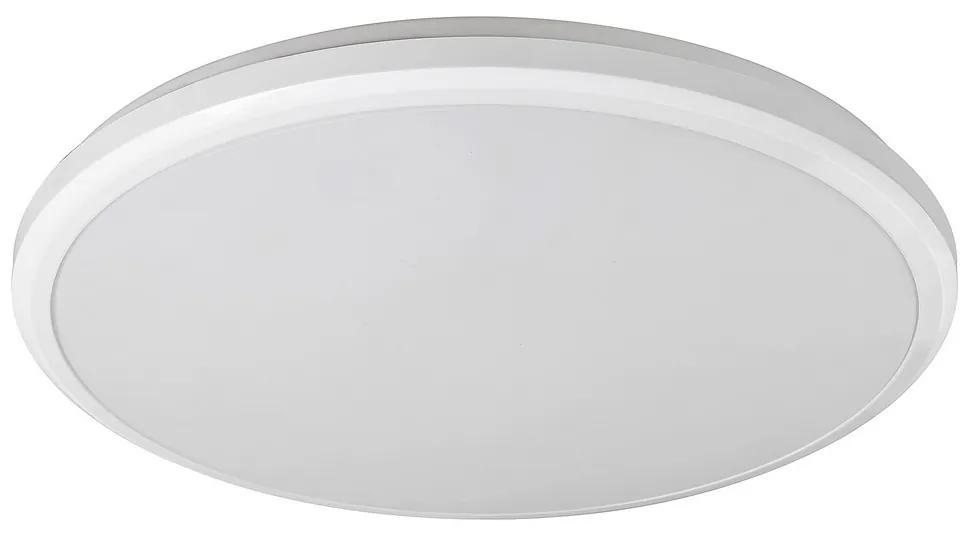 Rabalux 1429 - Plafonieră baie LED BRANDON LED/24W/230V IP65