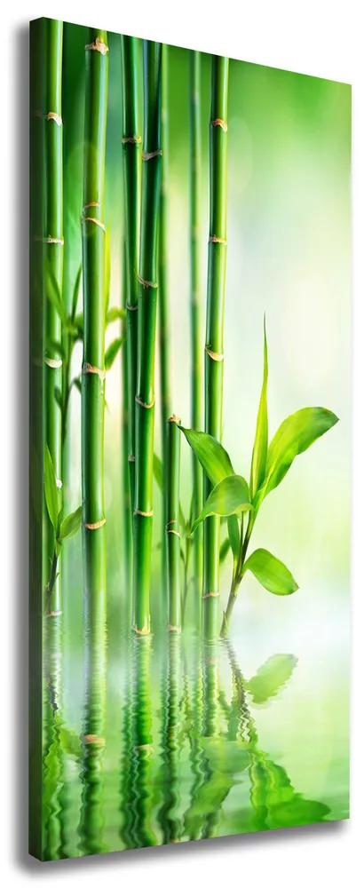 Tablou pe pânză canvas Bamboo în apă