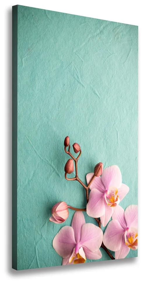 Tablou pe pânză Orhidee roz