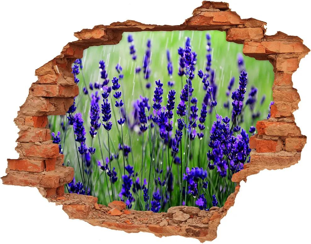 Fototapet un zid spart cu priveliște Lavandă