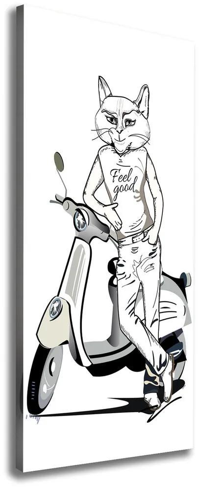 Pictură pe pânză Omul pisica