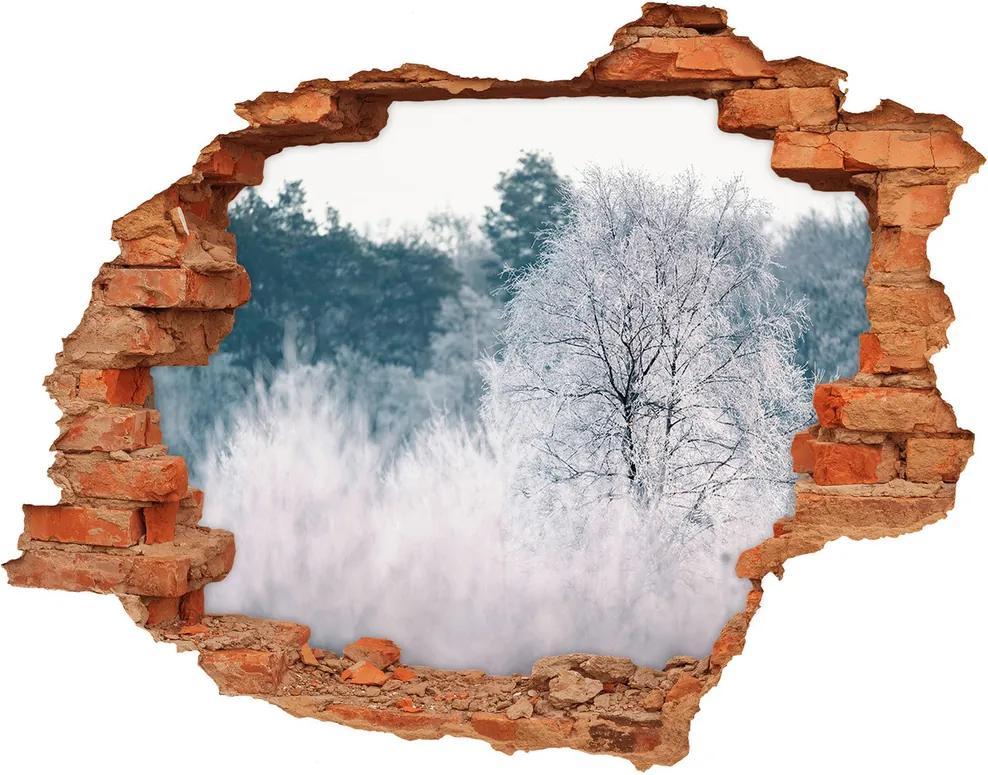 Fototapet un zid spart cu priveliște Copaci în timpul iernii