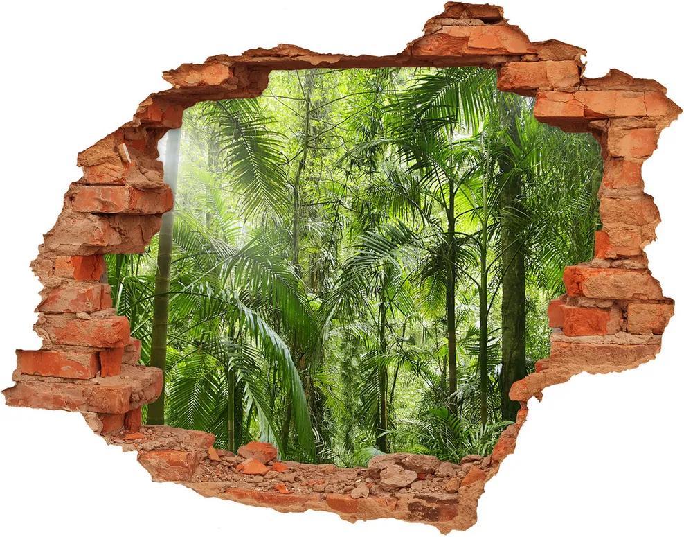 Fototapet 3D gaură în perete Padure tropicala